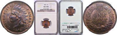 1876. NGC. MS-64. RB.